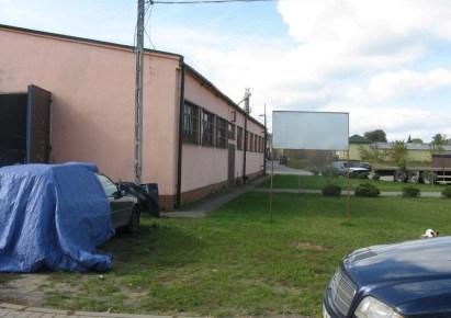 hala na sprzedaż - Kobyłka, Antolek